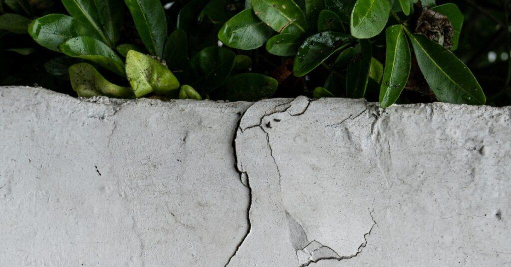 Repair Your Damaged Concrete